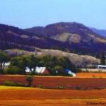 plowed-fields