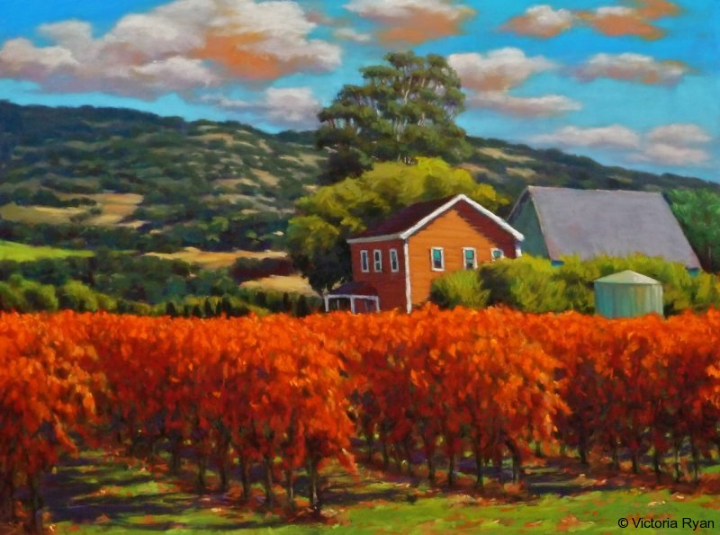 a-home-in-the-vineyard