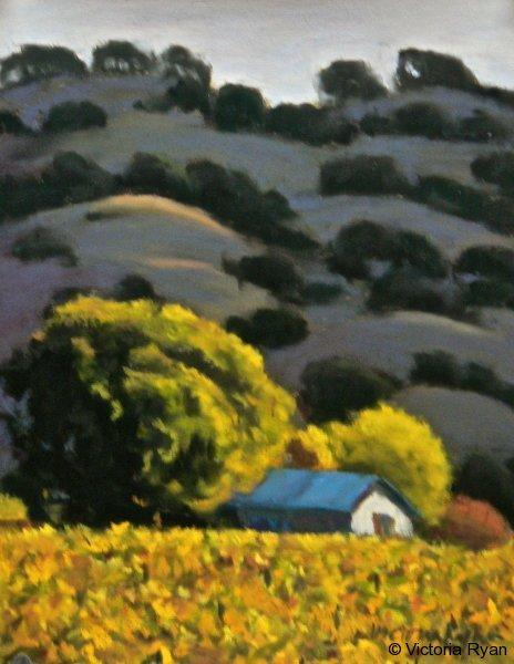 Last Light on the Vineyard