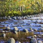 riverrocks.jpg