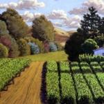 vineyardpatterns.jpg